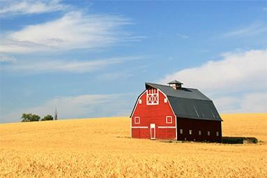 Agriculture & Farm Law